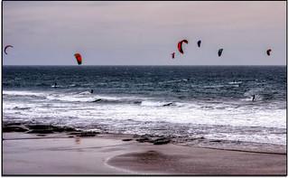 Wind Dancers...