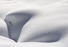 Snow curls (Astrid Photography.) Tags: shadow sunlight snow france cold nature lines frost structure savoie sloping lesmenuires minimalisme les3vallees minimalistisch astridphotography linesinthesnow lesbruyeres theartofsnowwindshadowandsun