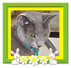 Happy Easter from Megumi and her Mama (martian cat) Tags: easter russianblue motivational m