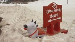 Sonamarg (isriya) Tags: trip india kashmir sonamarg