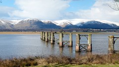 Bridge (18) (lairig4) Tags: old bridge stone scotland stirling piers rail railway disused derelict riverforth dismantled ochilhills alloa throsk bandeath