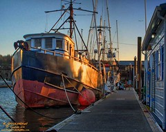 Fishing Boats docked at the Port of Siuslaw in Florence OR (PhotosToArtByMike) Tags: oregon harbor waterfront or pacificocean oregoncoast fishingboats pacificcoast florenceoregon pacificnorthwestcoast portofsiuslaw