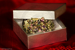 Box (OneEyeHalfShut) Tags: silver box silk jewels cushion