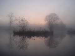 Misty Dawn (bryangarnett1 (trying to catch-up)) Tags: spring dawns 2013