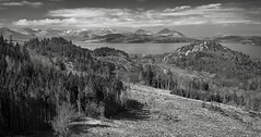 Towards Skye (vathiman) Tags: bw mountains skye forest scotland highlands pines cuillin