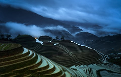 19,40 The terraced fields. (Massetti Fabrizio) Tags: china green fog clouds rice terrace guilin yangshuo fields cina yangshou guangxi guanxi nikond4s