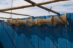 Pige (Phil_Heck) Tags: nasse net filet pige pche outil pointecourte bleu trompette extrieur nikon