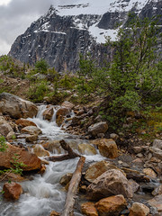 However far the stream flows ,it never forgets its source. (Josiane . On&Off) Tags: stream flow nikon nature nationalpark landscape rockymountain rocks summer snow mountains jaspernationalpark jasper mtedithcavell canada outdoor d750