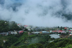 Almost covered (Victophoto) Tags: taiwan travel village   cingjing beautiful fog