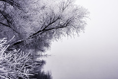 Cold River (Daniel Medley) Tags: snake river idaho landscape frost cold winter black white bw nikon d5200