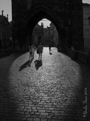 Shadows (Nicolas Ferrer) Tags: canon canoneos60d eos60d sigma sigmalenses sigma1770mm praga prague praha streetphotography streetphoto streetphotoprague blackandwhite blancoynegro shadows light bridge charlesbridge