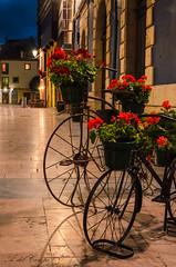 Bicycle (A. del Campo) Tags: nikond7000 nikon nikkor bicicleta bicycle street calle paseo decoracin flores flowers luz luces light shadows somras ribadesella asturias principadodeasturias verano bici bike