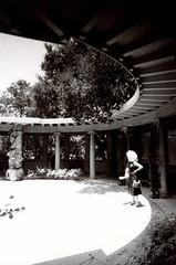 Porst SP Original Busch Gardens 10 () Tags: original busch gardens pasadena los angeles california history heritage theme park film tour mill waterwheel 1920s adolphus public private abandoned slr m42 classic retro vintage 35mm camera porst germany 1970s