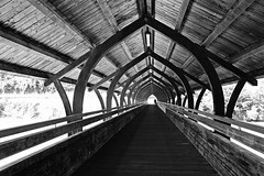 brckentag (Fotoristin - blick.kontakt) Tags: blackandwhite architecture bridge lines jogger silhouette diagonal wooden roofed brckentag fotoristin