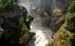 Athabasca Falls (Stefan Jrgensen) Tags: athabascafalls athabascariver falls river water gorge athabasca canada alberta jaspernationalpark icefieldsparkway 2013 sony dslra700 a700