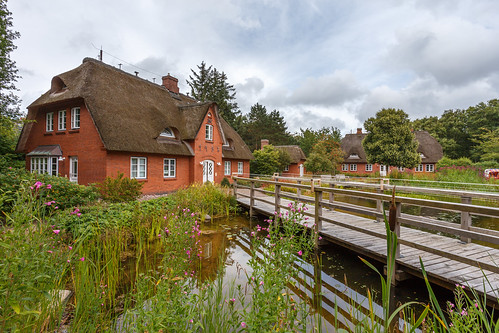 Friesian style thatched houses