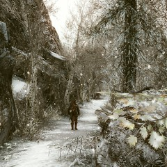 is coming... (NCanela) Tags: enderal landscape winter path paisaje snow outside trees plants mono