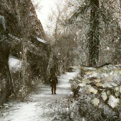 is coming... (NCanela) Tags: enderal landscape winter path paisaje snow outside trees plants mono