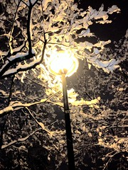 (Byby Kelberry) Tags: city winter snow cold night streetlamp uploaded:by=flickrmobile flickriosapp:filter=nofilter