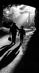 Mother and Son, Golden Gate Park (Explore) (Renate Flynn) Tags: sanfrancisco goldengatepark blackandwhite bw contrast mom child framing canon50mmf18 motherandson goldenhour canonef50mmf18ii niftyfifty canoneos7d canon7d renateflynn renatemarie