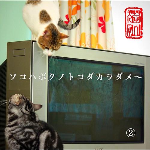 液晶テレビ 画像26