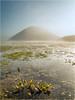 Silbury Mists (Chris Beard - Images) Tags: uk winter england mist colour sunrise landscape dawn frost february wiltshire silburyhill