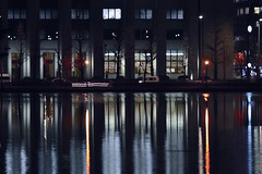 Lines and reflections (Electra V.K. (now in Tokyo)) Tags: nightphotography trees reflection water lines japan architecture buildings 50mm tokyo pond nikon asia cityscape explore   imperialpalace nikkor  hibiya   chiyoda   55200mm wetreflection        d3100 gettyimagesjapan13q1