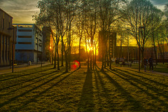 Spring is springing (0-1-6-1) Tags: trees sunset students sunshine manchester spring shadows oxfordroad manchesteruniversity hrd