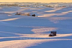 Winter Palouse Barns and Hills (Ryan McGinty) Tags: winter sunset usa snow landscape evening washington barns farmland idaho rollinghills palouse ryanmcginty