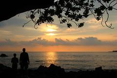 Kealakekua Bay, Hawaii (Karol Franks) Tags: silhouette sunset ocean sun tree hawaii kealakekuabay statehistoricalpark karolfranksgmailcom ©2014 karolfranks ©karolfranks okarolyahoocom