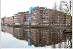Holland (Marco Di Leo) Tags: holland netherlands amsterdam europa europe nederland holanda paysbas olanda niederlande  hollandia holandsko amsterdo   amsterdama holandia  hollanda pasesbajos nederlnderna  pasesbaixos  amsterdamas paesibassi msterdam   alankomaat       nizozemsko   nyderlandai          hlan amsterdami      nderlande     pajjiilbaxxi