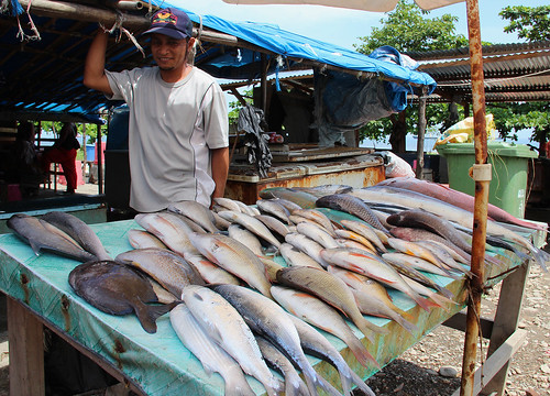 A fish stall at the fish market in Dili, Timor-Leste. Photo by Holly Holmes, 2013.