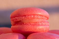 Macaron fraise tagada (Le No) Tags: patisserie fraisetagada macaron