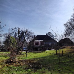 "My good friend Pascal takes the top off the cherry tree at #hungrycyclistlodge #treepruning • <a style=""font-size:0.8em;"" href=""http://www.flickr.com/photos/30386142@N06/8578383056/"" target=""_blank"">View on Flickr</a>"