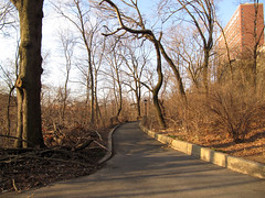 Morningside Park, 7:45 a.m., 22 March 2013 (jschumacher) Tags: nyc morningsidepark