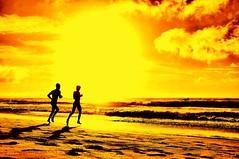 Running on the beach (missgeok) Tags: lighting morning sea sky art beach sports colors beautiful clouds composition sunrise fun outdoors golden lightandshadows interesting movement artw