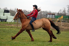 Meg & Lady Shoot (AmyyJG) Tags: horses horse girl landscape bareback mare pony ponies equestrian equine horseriding gallop galloping horserider barebackriding equinephotography equestrianphotography