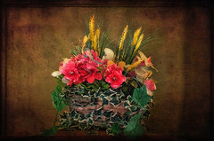 Flowers in a Basket (jta1950) Tags: flowers plant painterly flower texture leaves petals basket framed arrangement