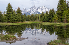 Looking Glass (dbushue) Tags: trees mountains nature reflections landscape pond nikon cloudy wyoming 2012 snowcovered grandtetonnationalpark coth gtnp supershot schwabacherslanding absolutelystunningscapes damniwishidtakenthat coth5 dailynaturetnc13