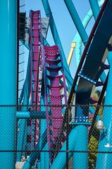 Mako (zachclarke) Tags: seaworldorlando seaworld seaworldentertainment seaworldparks buschgardens themepark amusementpark marinelifepark marinepark 2016 summer july zachclarke2 zachclarke nikon nikond5100 d5100 mako makoshark shark sharks new newfor2016 bmhyper bm hyper hypercoaster rollercoaster rollercoasters sharkencounter