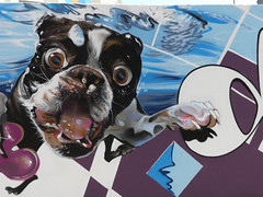 Graffiti / Street Art (paramonguino) Tags: p1120980jpg1 200816 tenerife islascanarias canaryislands kanarischeinseln graffiti streetart