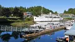 P1480967 (Tipfinder) Tags: kanada canada vancouverisland portalberni tofino ucluelet pacificrimnp long beach bearwhatching hotspringcove