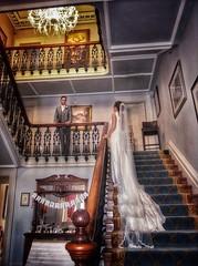 Romance.... (janetmeehan) Tags: ireland dublin beautiful fashion veil dress bridal staircase stairs vintage summer love groom bride wedding