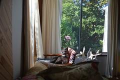 mao (Danny W. Mansmith) Tags: mao home sunshine frontyard