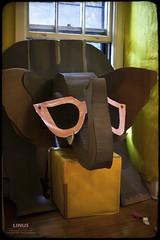 The Elephant in the Room (Linus Gelber) Tags: nyc newyork governorsisland park nolanpark newyorkharbor 8a dysfunctionaltheatrecompany paperhouse art installation decoration crafts joyous elephant sunglasses construction cardboard window room pachyderm seasons