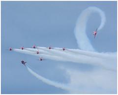 Swan (Brendan Masterson) Tags: bournemouthairfestival dorset d7200 nikon nikon300mmf4 redarrows aircraft airshow airdisplay