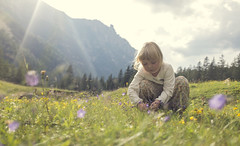 buket samler (Anders Hviid) Tags: wendy buket blomster sol sommer pige plukke