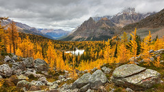 Autumn's Golden Glow (820-Photography by James Anderson) Tags: yohonationalpark britishcolumbia lakeohara goldlarchtrees larchtrees jamesa1 820photography