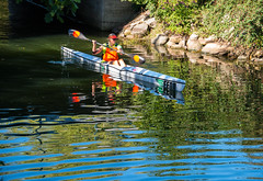 Nature (Maria Eklind) Tags: vatten citynature fotosondag malm nature reflection spegling fs160911 outdoor kanot water canoe skneln sverige se natur
