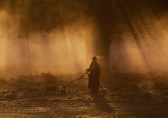 The Dogwalker 2 (alex saberi) Tags: dogwalker dogs mist richmondpark richmond london uk england fineartphotos art atmosphere fog